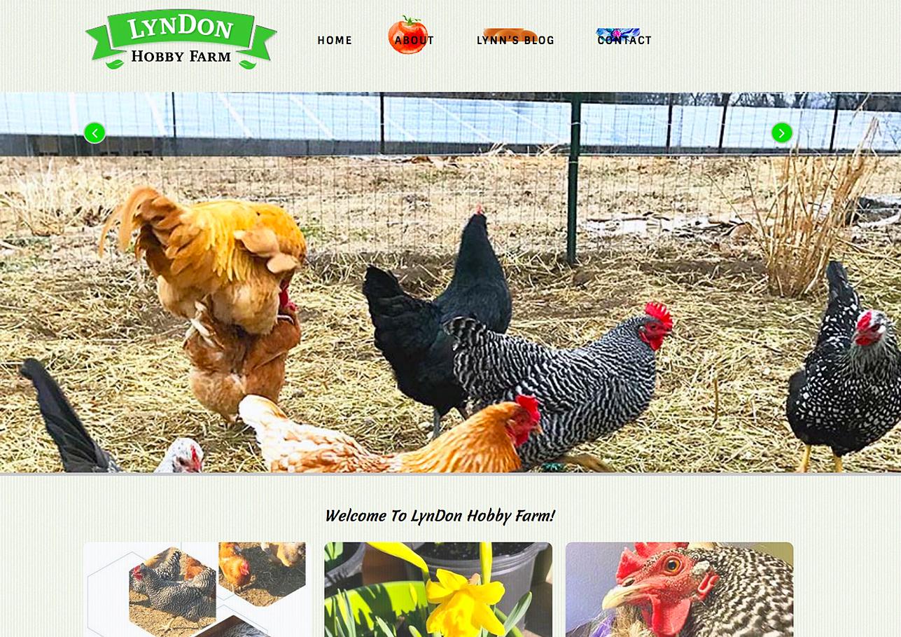 Lyndon Hobby Farm 1